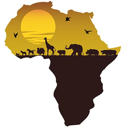 assicurazione-Africa