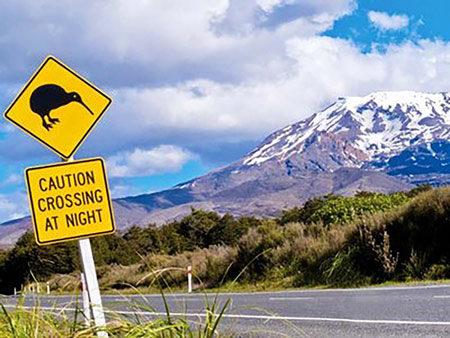 mondassur-new-zeland
