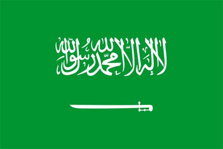 Assicurazione Arabia Saudita