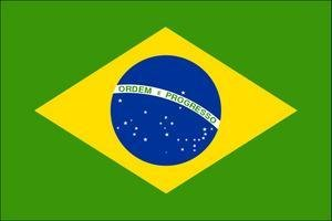 insurance-bresil-flag