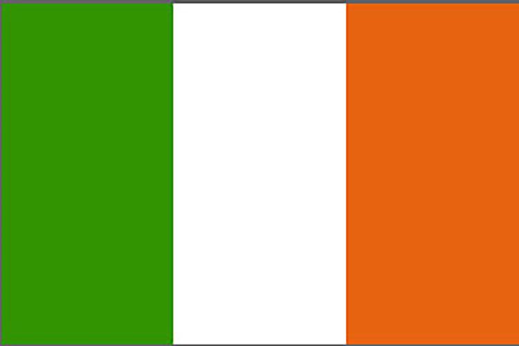 Seguro de Irlanda