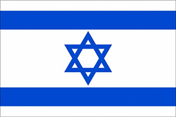 Seguro de Israel