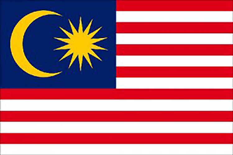 Seguro de Malasia