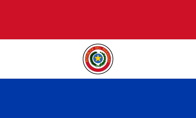 seguro paraguay