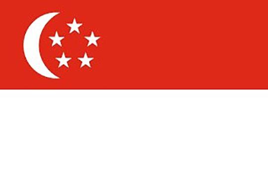 seguro singapore