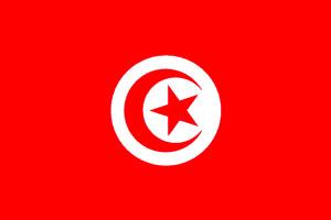 Seguros de Túnez