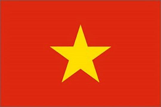 vietnam assicurazione